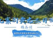 九寨黄龙三日精品游(0自费-赠送藏羌晚会)限时特惠B